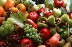 طرح تولید محصولات کشاورزی سالم در نجف آباد اجرا خواهد شد طرح تولید محصولات کشاورزی سالم در نجف آباد اجرا خواهد شد طرح تولید محصولات کشاورزی سالم در نجف آباد اجرا خواهد شد 31 145x95