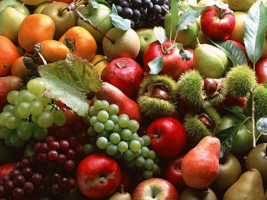 طرح تولید محصولات کشاورزی سالم در نجف آباد اجرا خواهد شد