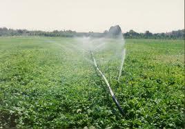تخصیص بیش از دو هزار و پانصد میلیون تومان به امور آب و خاک جهاد کشاورزی نجف آباد