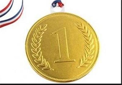 کسب ۶۰ درصد مدال های ورزشی استان اصفهان توسط ورزشکاران نجف آبادی
