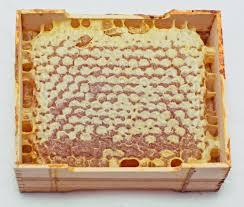 کشف محموله بزرگ قاچاق داروهای زنبور عسل در نجف آباد