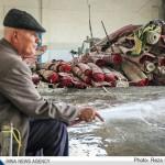 تصاویر شستن صنعتی قالی در نجف آباد                   5 150x150