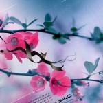 پوستر با کیفیت بالا عید فاطمی