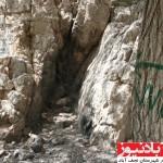 برخورد نظامی چشمه ارمیدک نجف آباد را زخمی کرد+ عکس                      10 150x150