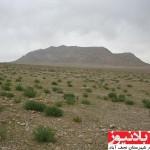 برخورد نظامی چشمه ارمیدک نجف آباد را زخمی کرد+ عکس                      2 150x150