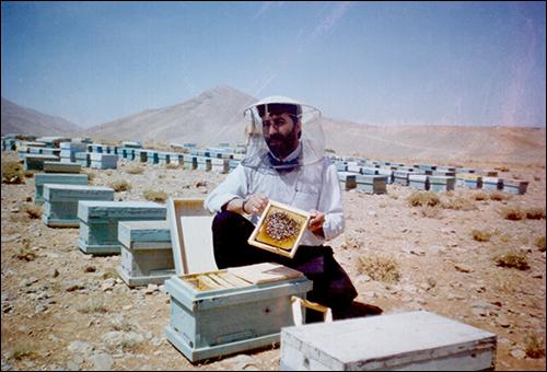 مهمترین مشکلات صنعت زنبورداری ایران از زبان یک نخبه کشوری