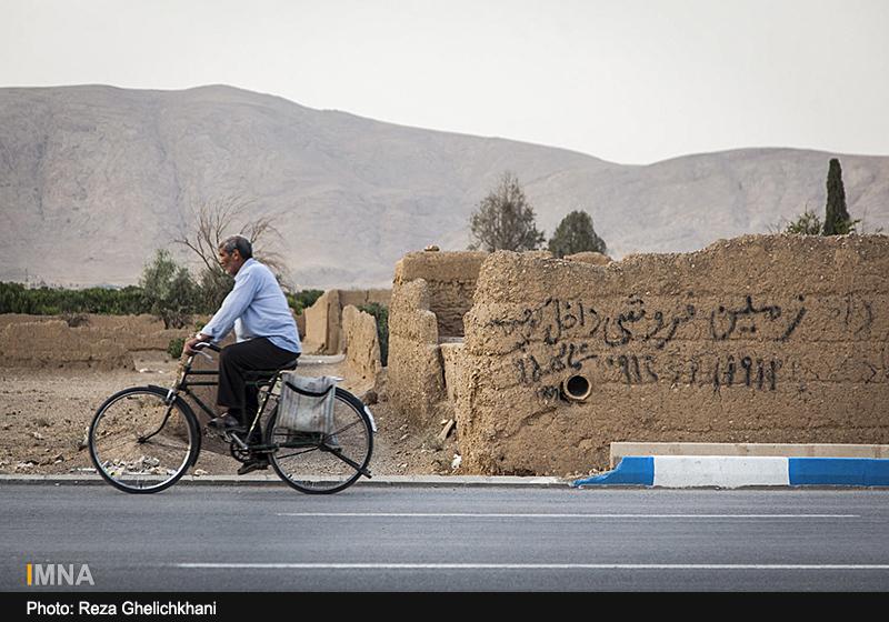 نابودی یک سوم درختان نجف آباد/ بانک، حیثیت کشاورز را می برد
