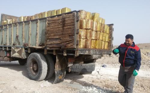 نابودی ۵۰۰ کیلو پنیر فاسد در نجف آباد