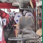 گزارشی تصویری از فاجعه اتوبوس دانشگاه آزاد نجف آباد گزارشی تصویری از فاجعه اتوبوس دانشگاه آزاد نجف آباد                         24 150x150