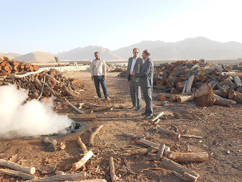 تخریب پنج چاه زغالی در نجف آباد