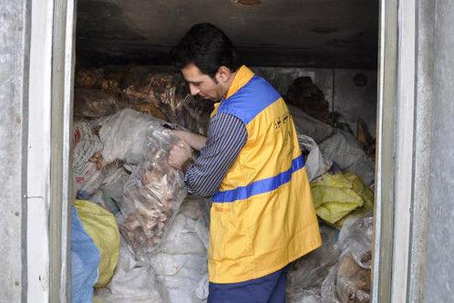 نابودی کله های نجف آباد در دلیجان نابودی کله های نجف آباد در دلیجان نابودی کله های نجف آباد در دلیجان