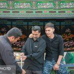 نجف آباد آماده استقبال از شهید حججی شده+تصاویر نجف آباد آماده استقبال از شهید حججی شده+تصاویر                                                                                 30 150x150
