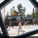 گزارش تصویری از روز تاریخی پایتخت شهدای ایران گزارش تصویری از روز تاریخی پایتخت شهدای ایران 1421918 677 150x150