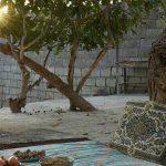 اقامتگاه بومگردی در روستای نهضت آباد+ تصاویر اقامتگاه بومگردی در روستای نهضت آباد+ تصاویر                                                              3 150x150