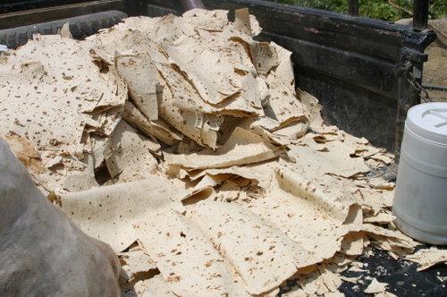 انتقال سم از نان به بدن انتقال سم از نان به بدن انتقال سم از نان به بدن