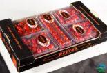 گوجه فرنگی گلخانه ای – کاشت ، داشت ، برداشت ، صادرات  گوجه فرنگی گلخانه ای – کاشت ، داشت ، برداشت ، صادرات 3 155x105