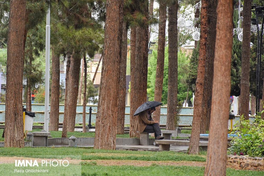 بارش باران در نجف آباد روز بارانی نجف آباد+تصاویر روز بارانی نجف آباد+تصاویر                                          1