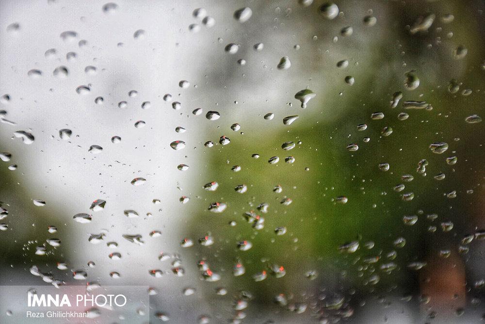بارش باران در نجف آباد روز بارانی نجف آباد+تصاویر روز بارانی نجف آباد+تصاویر                                          16
