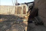 آتش سوزی در چوب بری+ تصاویر  آتش سوزی در چوب بری+ تصاویر                                                 1 155x105