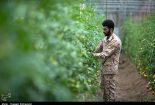 فعالیت های سپاه در سیستان و بلوچستان+ فیلم