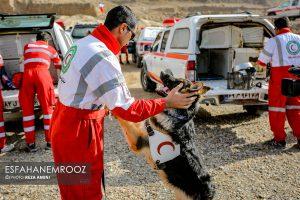 تمرین سگ های زنده یاب ایرانی و آلمانی در محدوده معدن سورمه نجف آباد مانور سگ های زنده یاب آلمانی در نجف آباد+تصاویر مانور سگ های زنده یاب آلمانی در نجف آباد+تصاویر                                                                     11 300x200