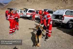 تمرین سگ های زنده یاب ایرانی و آلمانی در محدوده معدن سورمه نجف آباد مانور سگ های زنده یاب آلمانی در نجف آباد+تصاویر مانور سگ های زنده یاب آلمانی در نجف آباد+تصاویر                                                                     15 300x200