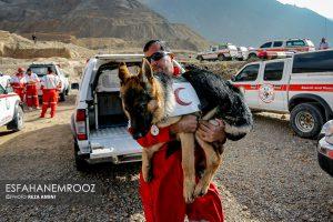 تمرین سگ های زنده یاب ایرانی و آلمانی در محدوده معدن سورمه نجف آباد مانور سگ های زنده یاب آلمانی در نجف آباد+تصاویر مانور سگ های زنده یاب آلمانی در نجف آباد+تصاویر                                                                     17 300x200