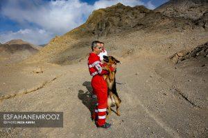 تمرین سگ های زنده یاب ایرانی و آلمانی در محدوده معدن سورمه نجف آباد مانور سگ های زنده یاب آلمانی در نجف آباد+تصاویر مانور سگ های زنده یاب آلمانی در نجف آباد+تصاویر                                                                     18 300x200