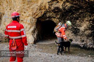 تمرین سگ های زنده یاب ایرانی و آلمانی در محدوده معدن سورمه نجف آباد مانور سگ های زنده یاب آلمانی در نجف آباد+تصاویر مانور سگ های زنده یاب آلمانی در نجف آباد+تصاویر                                                                     32 300x200