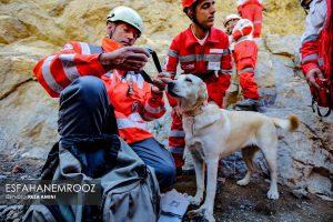 تمرین سگ های زنده یاب ایرانی و آلمانی در محدوده معدن سورمه نجف آباد مانور سگ های زنده یاب آلمانی در نجف آباد+تصاویر مانور سگ های زنده یاب آلمانی در نجف آباد+تصاویر                                                                     35 300x200