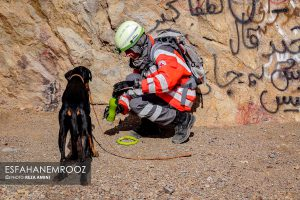 تمرین سگ های زنده یاب ایرانی و آلمانی در محدوده معدن سورمه نجف آباد مانور سگ های زنده یاب آلمانی در نجف آباد+تصاویر مانور سگ های زنده یاب آلمانی در نجف آباد+تصاویر                                                                     38 300x200