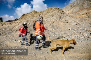 تمرین سگ های زنده یاب ایرانی و آلمانی در محدوده معدن سورمه نجف آباد مانور سگ های زنده یاب آلمانی در نجف آباد+تصاویر مانور سگ های زنده یاب آلمانی در نجف آباد+تصاویر                                                                     39 300x200