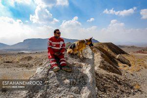 تمرین سگ های زنده یاب ایرانی و آلمانی در محدوده معدن سورمه نجف آباد مانور سگ های زنده یاب آلمانی در نجف آباد+تصاویر مانور سگ های زنده یاب آلمانی در نجف آباد+تصاویر                                                                     4 300x200