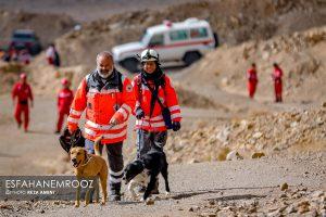 تمرین سگ های زنده یاب ایرانی و آلمانی در محدوده معدن سورمه نجف آباد مانور سگ های زنده یاب آلمانی در نجف آباد+تصاویر مانور سگ های زنده یاب آلمانی در نجف آباد+تصاویر                                                                     5 300x200