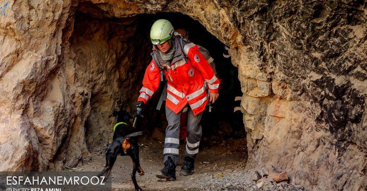 مانور سگ های زنده یاب آلمانی در نجف آباد+ تصاویر