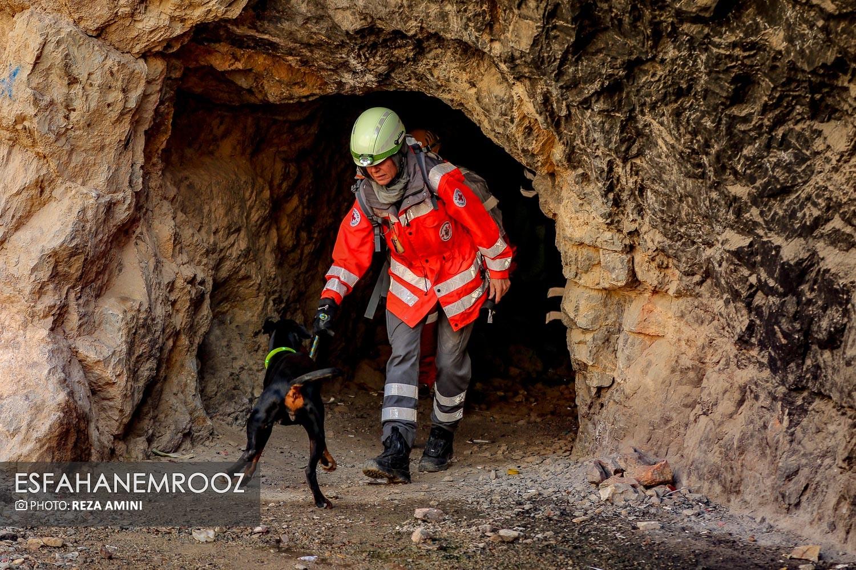 مانور سگ های زنده یاب آلمانی در نجف آباد+تصاویر