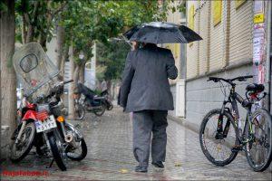 بارش باران در نجف آباد بارش 25 میلیمتری باران در نجف آباد بارش 25 میلیمتری باران در نجف آباد                                          2 300x200