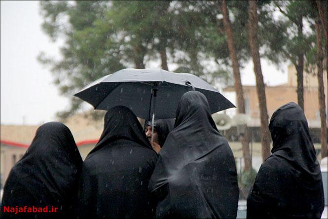 بارش باران روز بارانی نجف آباد+تصاویر روز بارانی نجف آباد+تصاویر                                          6
