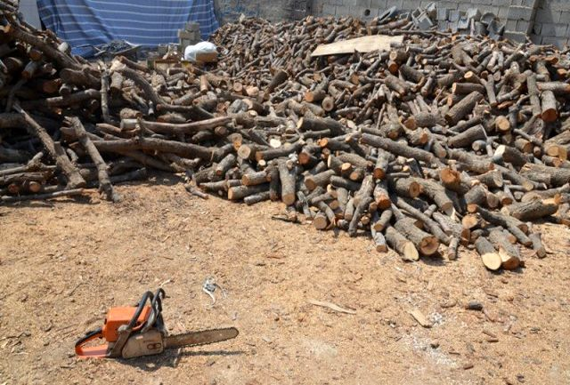 قاچاق چوب کشف و ضبط کشف و ضبط ۲۰ تن چوب بلوط قاچاق در نجف آباد