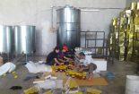 کشف و ضبط ۶۰ تن عسل تقلبی در نجف آباد کشف و ضبط کشف و ضبط 60 تن عسل تقلبی در نجف آباد                   155x105