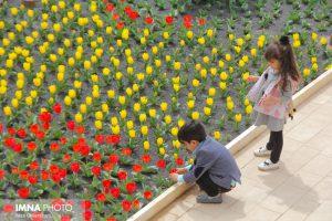 باغ گل ها جاذبه های گردشگری جاذبه های گردشگری نجف آباد + فیلم و عکس                                  300x200