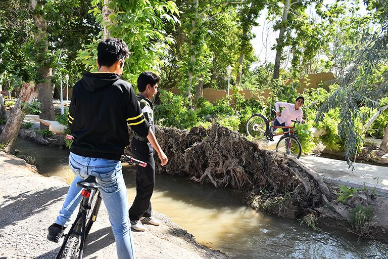 محور بیشه نجف آباد کشته کشته شدن زن جوان در طوفان نجف آباد + تصاویر                            2