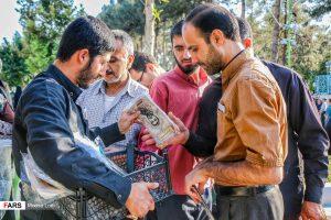 دومین سالگرد شهید حججی سالگرد سالگرد شهادت شهید حججی، دومین سالگرد + تصاویر                                           15 300x200