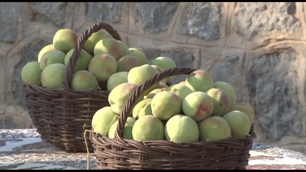 هلو جشنواره جشنواره هلوی قلعه شاهی در گلدشت + تصاویر و فیلم                            3 1024x576