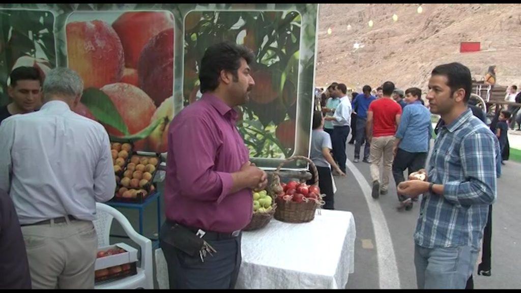 هلوی قلعه شاهی جشنواره جشنواره هلوی قلعه شاهی در گلدشت + تصاویر و فیلم                            7 1024x576