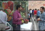 جشنواره هلوی قلعه شاهی در گلدشت + تصاویر و فیلم جشنواره جشنواره هلوی قلعه شاهی در گلدشت + تصاویر و فیلم                            7 155x105