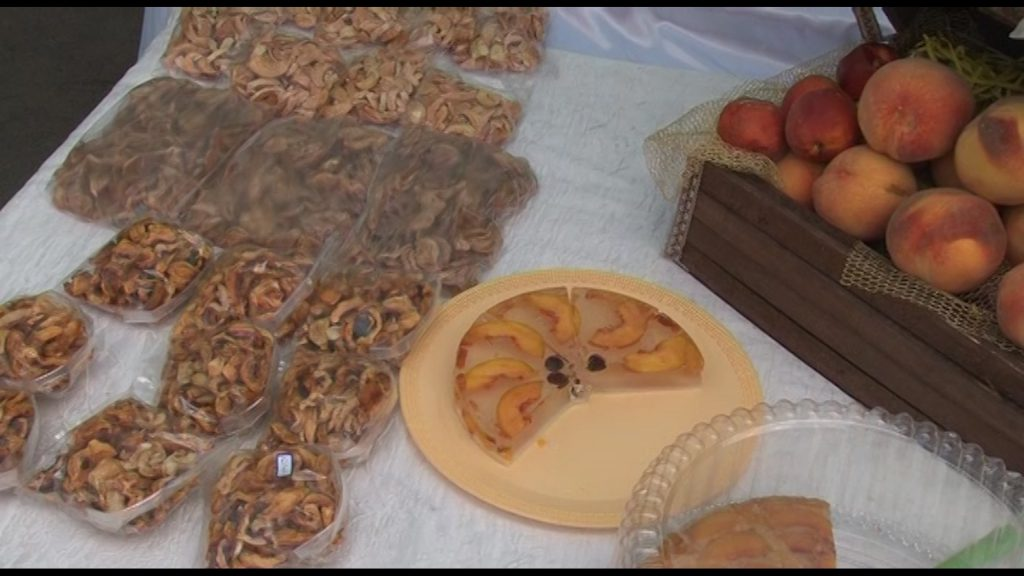 جشنواره جشنواره جشنواره هلوی قلعه شاهی در گلدشت + تصاویر و فیلم                            9 1024x576