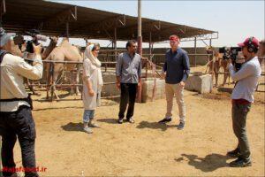 سانی ساید تیستر آمریکایی در نجف آباد شگفتی شگفتی تیستر آمریکایی از غذاهای سنتی نجف آباد + فیلم و تصاویر 1566196321 O0hO6 300x200