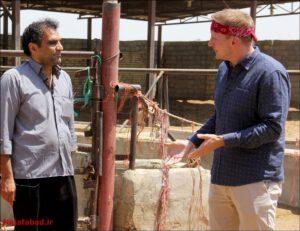 سانی ساید تیستر آمریکایی در نجف آباد شگفتی شگفتی تیستر آمریکایی از غذاهای سنتی نجف آباد + فیلم و تصاویر 1566196326 K5kC2 300x231