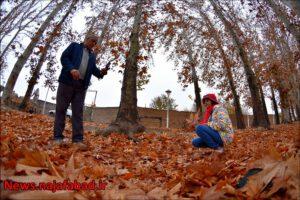 پاییز نجف آباد پاییز در بوستان زندگی نجف آباد + تصاویر پاییز در بوستان زندگی نجف آباد + تصاویر 1575798380 R6bP7 300x200